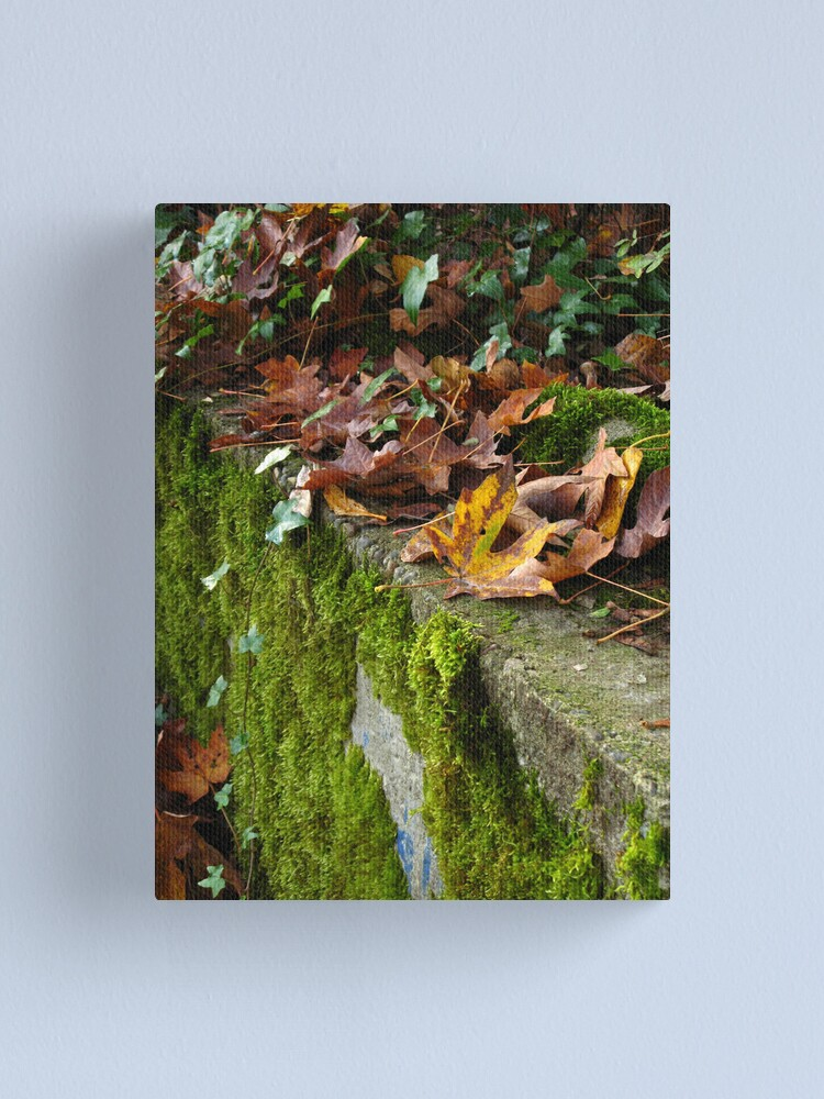 Alternate view of Reclamation Canvas Print