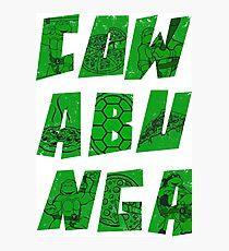 Cowabunga: Turtles + Pizza Photographic Print