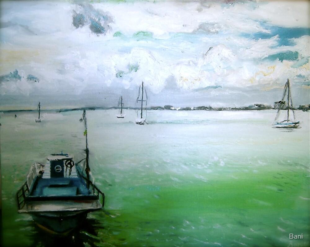 Boats by Bani