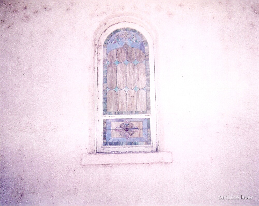 mission windows  by candace lauer