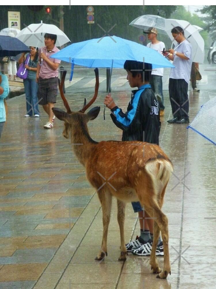 «Biche Nara Pluie» par Timena