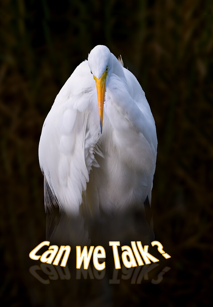 "Egret ""Can We Talk"" Greeting Card by Delores Knowles"
