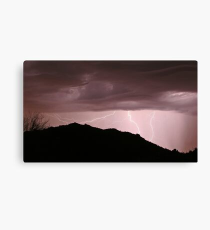 Desert Strikes Canvas Print