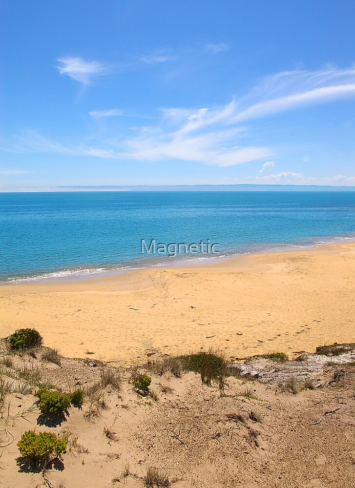 Secluded 1 by Magnetic