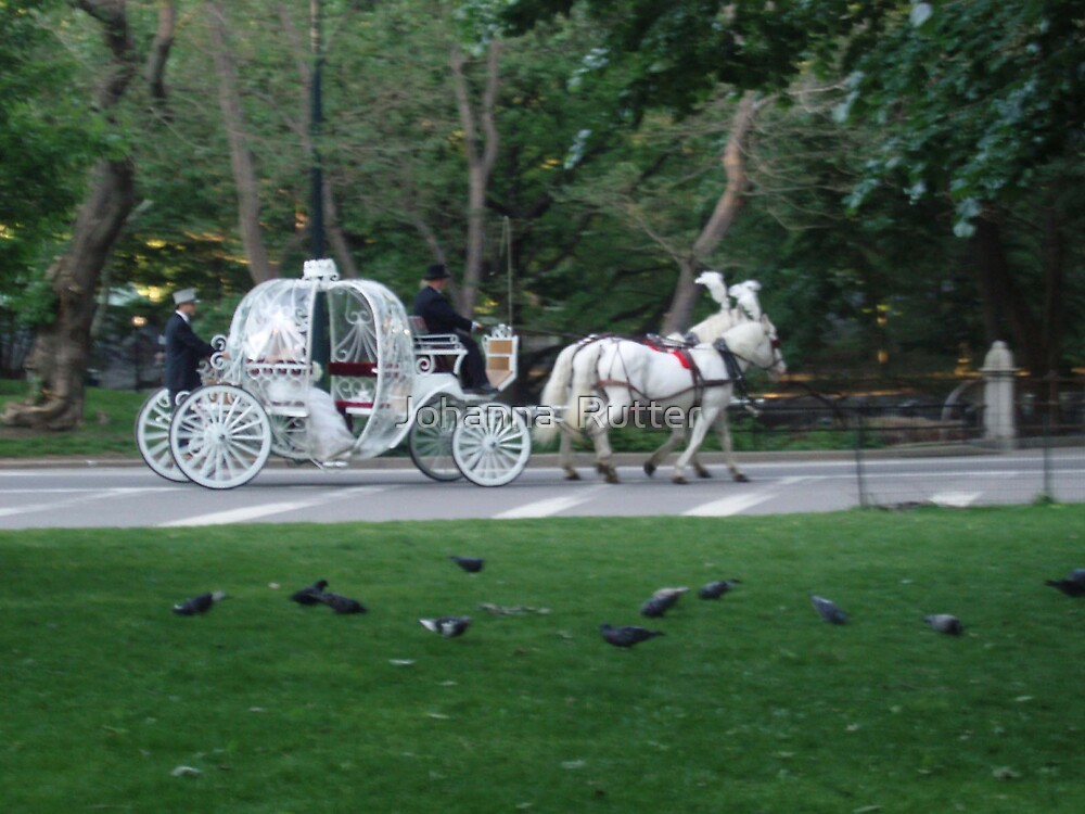 Central Park Wedding by Johanna  Rutter