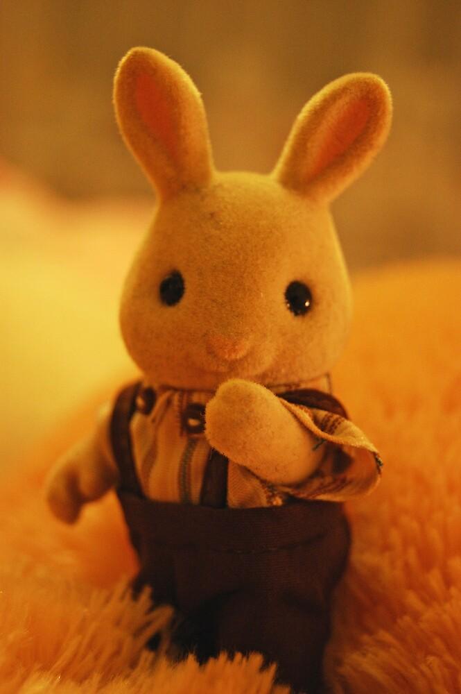 Hey Mr Bunny by silverfish