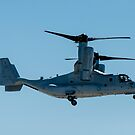 MV-22 Osprey by barnsis