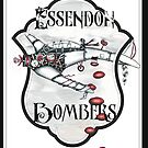 Essendon Bombers by Jenny Wood