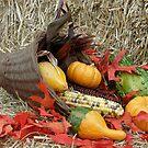 Thankful Bounty by EmmaLeigh