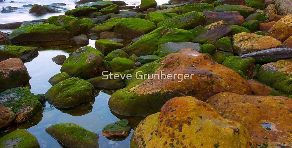Rocks at Coogee Beach by Steve Grunberger