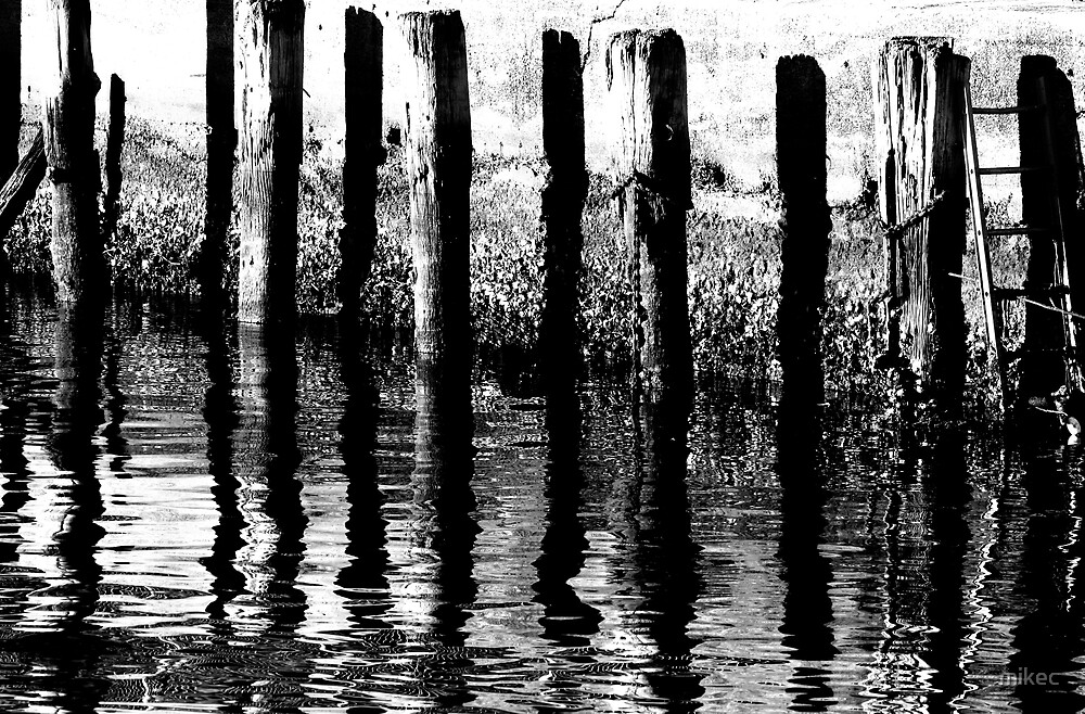 poles by mikec