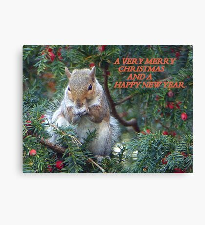 Squirrel in Rowan Tree in York.  Canvas Print