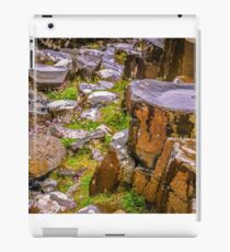 Ireland 'Rocks' - Giants Causeway, Northern Ireland #10 iPad Case/Skin