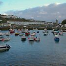 Porthleven harbour by Steve plowman