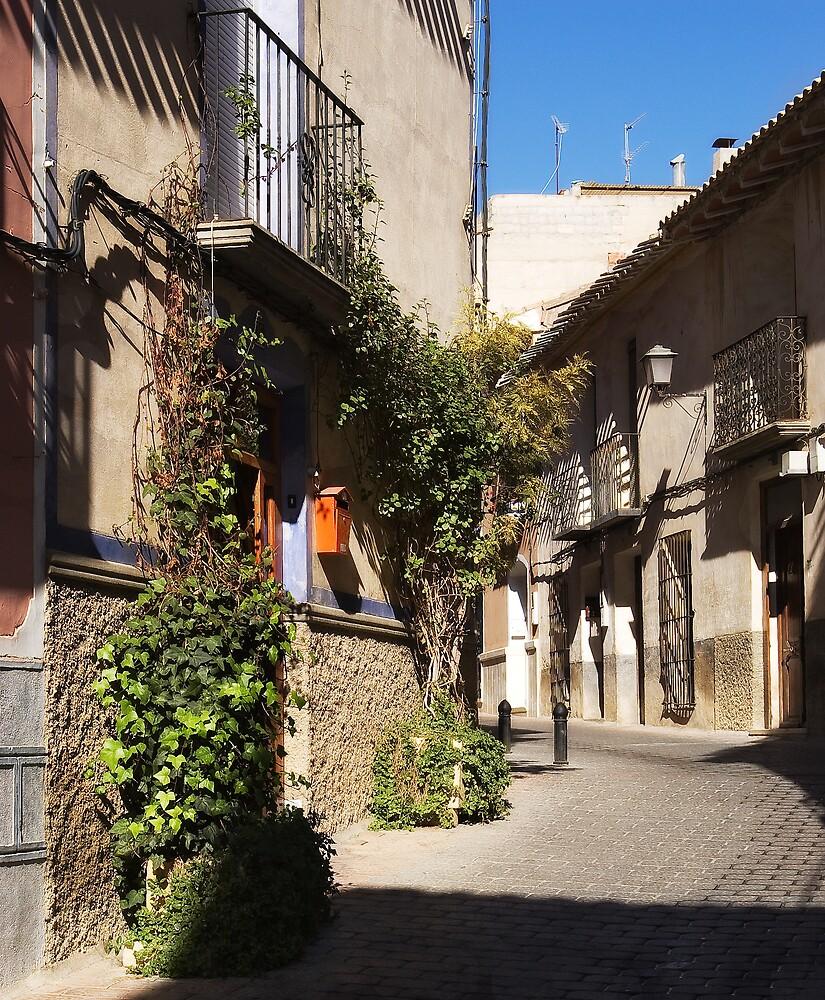 Calle de Doña Elvira Mula by Johninmula