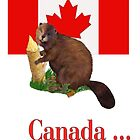 Furry Canada Card by SpiceTree