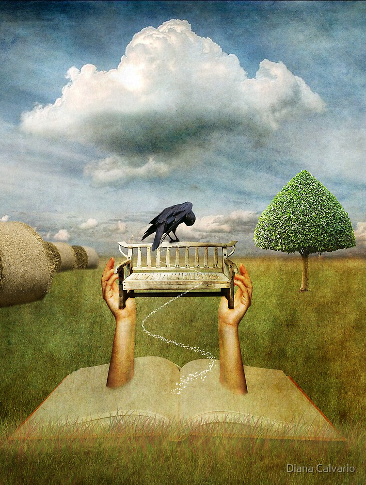 the storyteller by Diana Calvario