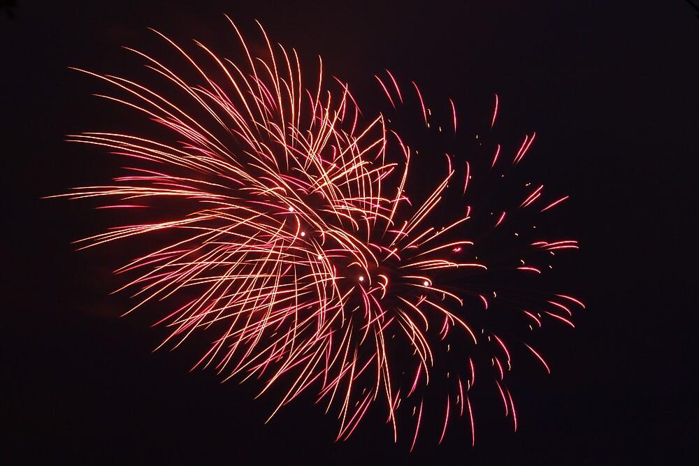 Fireworks-3 by silverfish