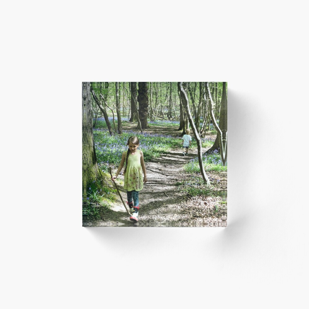 In the bluebell woods Acrylic Block