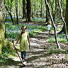 In the bluebell woods by chihuahuashower