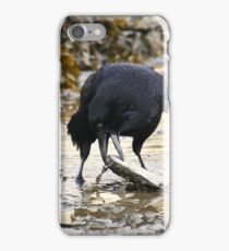 Clever crow iPhone Case/Skin