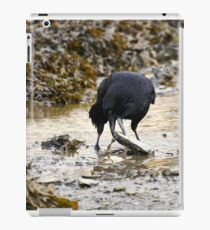 Clever crow iPad Case/Skin