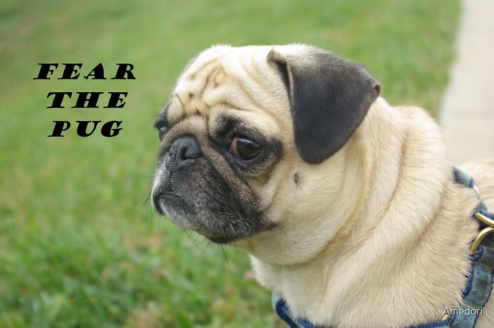 Fear The Pug by Amedori