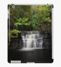 Tranquil Space iPad Case/Skin