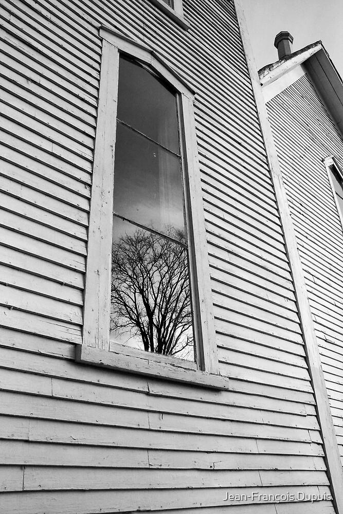Windows by Jean-François Dupuis