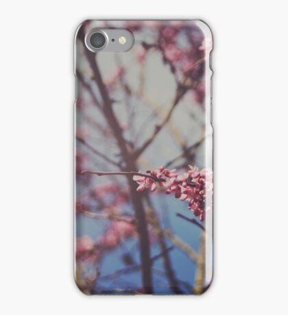 Sugar iPhone Case/Skin