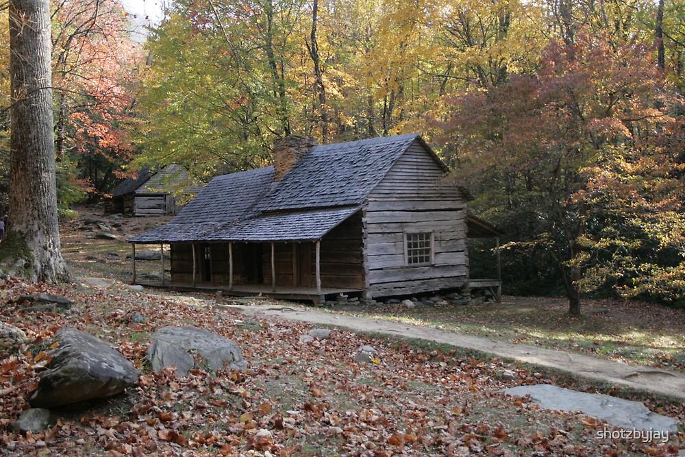 Smoky Mountain Log Cabin and Log Barn by shotzbyjay