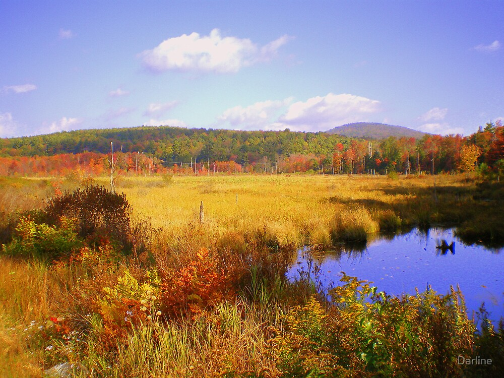 Autumn's Beauty by Darline
