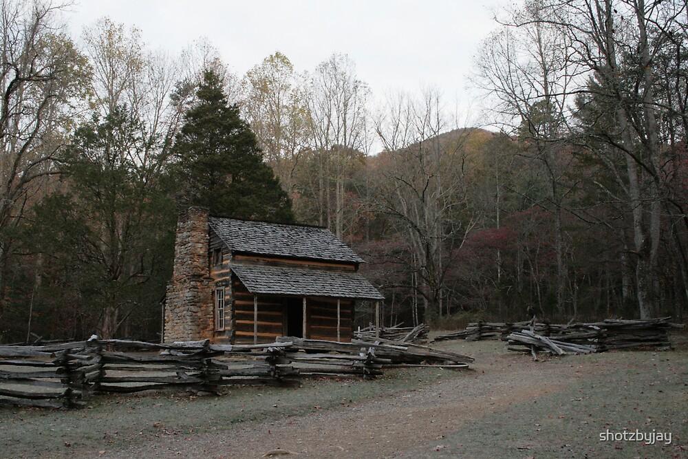 Smoky Mountain Log Cabin - John Oliver Place by shotzbyjay
