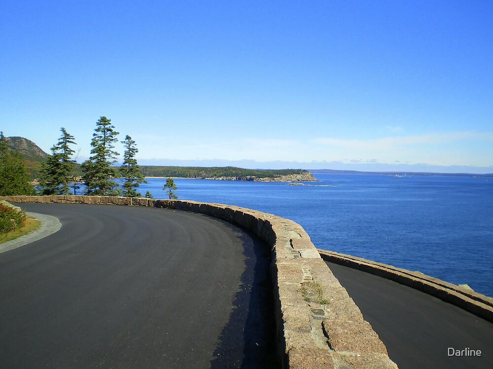 Acadia National Park Vista by Darline