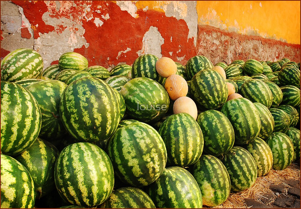 melons by louise