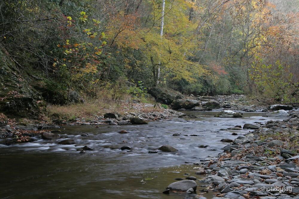 Smoky Mountain Stream III by shotzbyjay