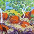 Devils Marbles Northern Territory , Noon by Virginia McGowan