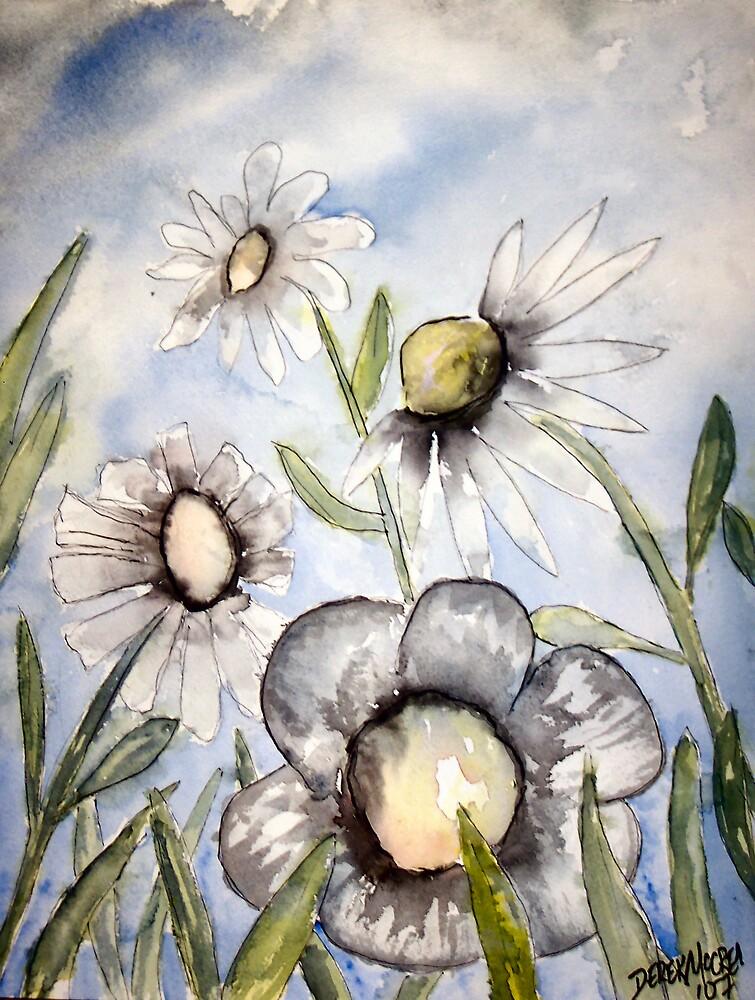 White field of flowers by derekmccrea