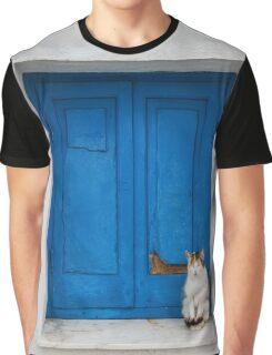 Painted Blue Windows Old Cat Sat On Windowsill  Graphic T-Shirt