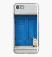 Painted Blue Windows Old Cat Sat On Windowsill  iPhone Case/Skin