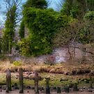 Kennetpans Distillery Ruins by Jeremy Lavender Photography