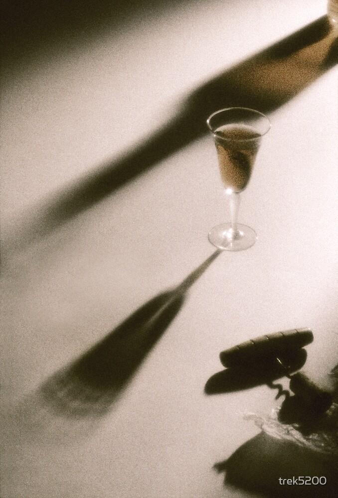 Wine glass by trek5200
