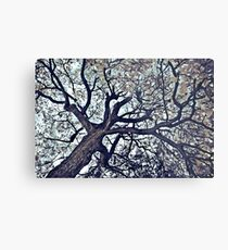 The Farley Faerie Tree Metal Print