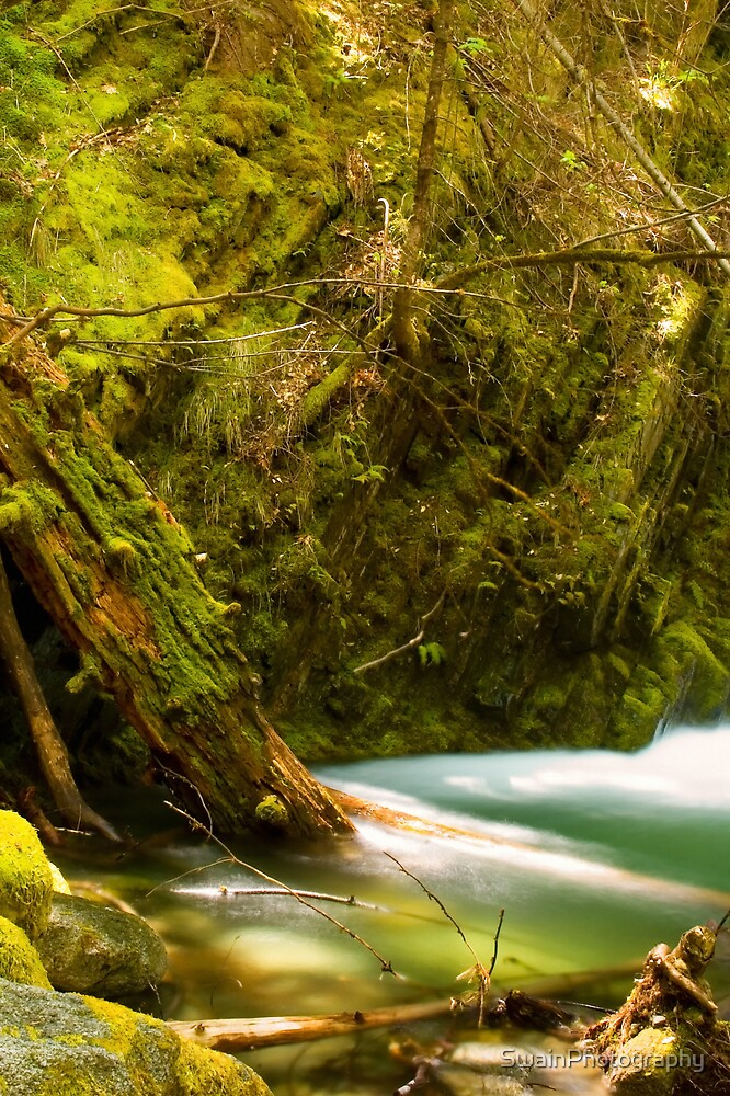 Boulder Creek Falls Pool by SwainPhotography