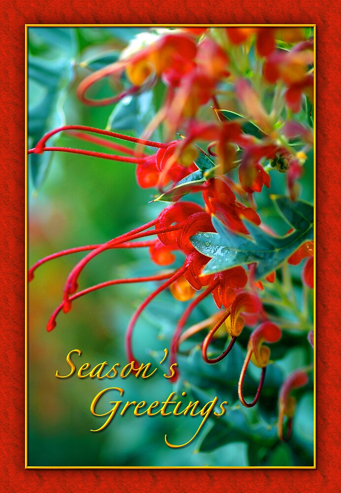 Seasons Greetings 1 by samatar