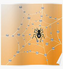 Spider and web Poster