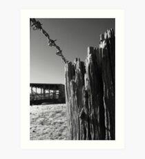 Barbwired Fencepost Art Print