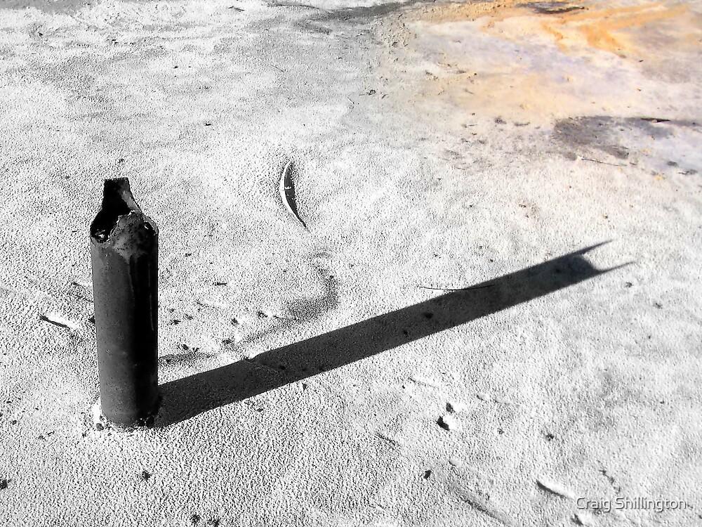Bat Post by Craig Shillington