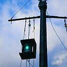 The green light. by Steve plowman
