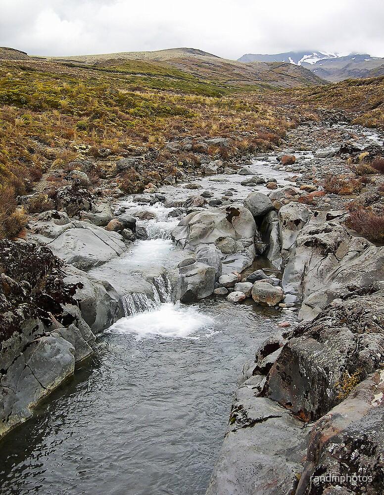 Tongariro Stream 3 by randmphotos